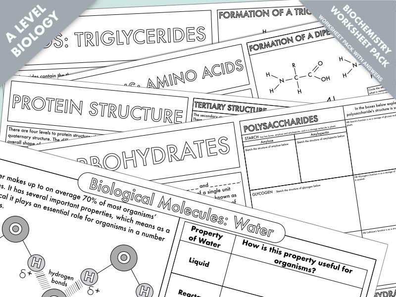 A Level Biology: Biochemistry Worksheet Pack