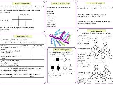 Inheritance revision GCSE worksheet by deb1977   Teaching
