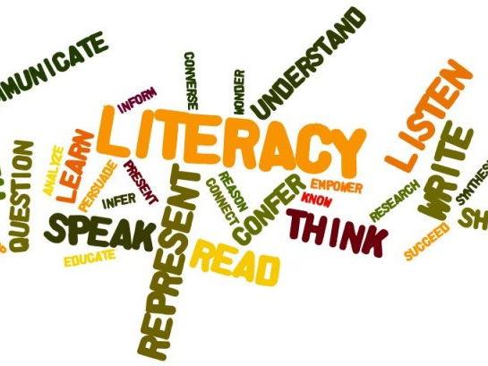 Literacy Worksheets and Homework Packs