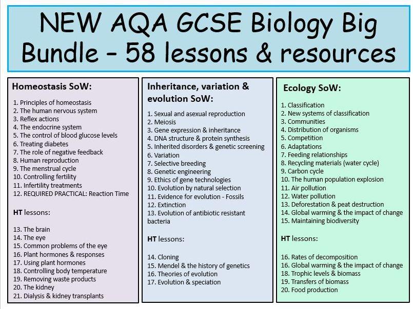 NEW AQA GCSE Biology BIG BUNDLE: Homeostasis, Inheritance, variation & evolution, Ecology lessons