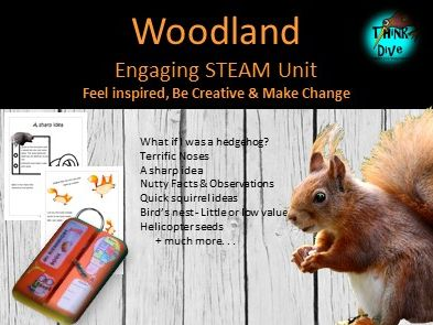Project Based Learning: Woodland Animals - Lapbook, STEAM, Biomimicry, KS1, NGSS