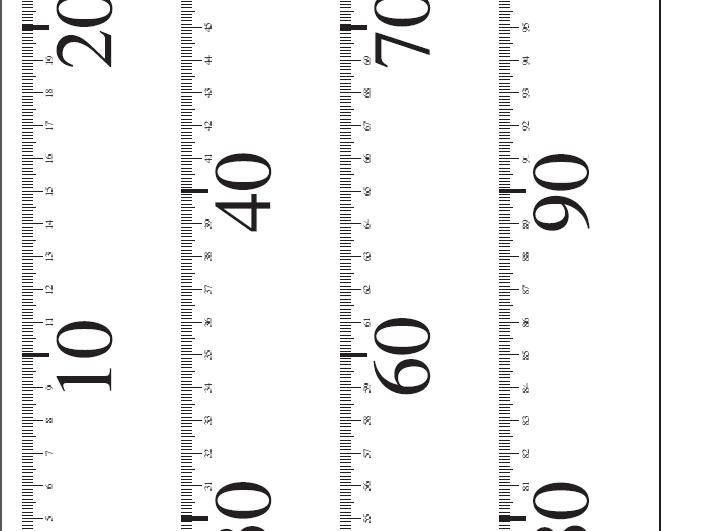 Foldable Paper Meter Stick