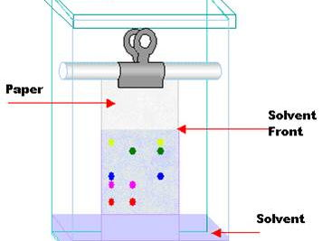 Year 7 Chemistry - Solutions Topic
