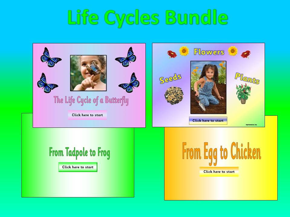 Life Cycles Topic Bundle