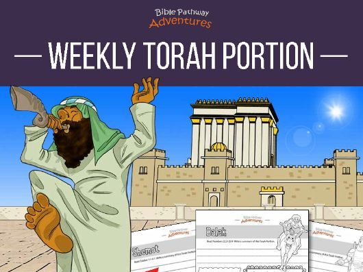 Weekly Torah Portion Coloring Activity Book