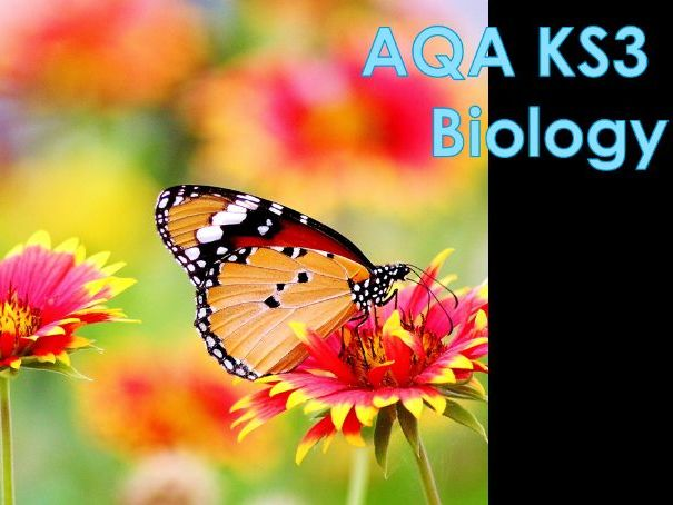 AQA KS3 Feeding Relationships Lesson 7 - Maintaining Biodiversity
