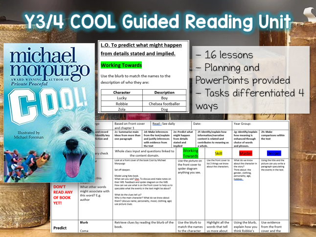 Cool by Michael Morpurgo Guided Reading Unit - 4 weeks