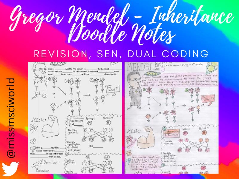 Gregor Mendel Inheritance Science Doodle Notes