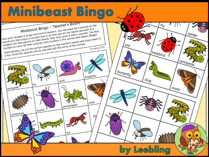 Minibeast bingo - Insect and Bug Bingo