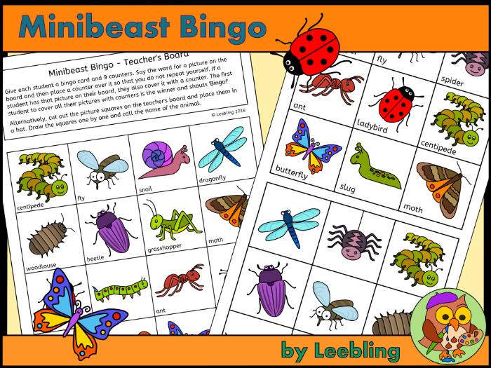 Minibeast bingo - Insect and Bug Bingo