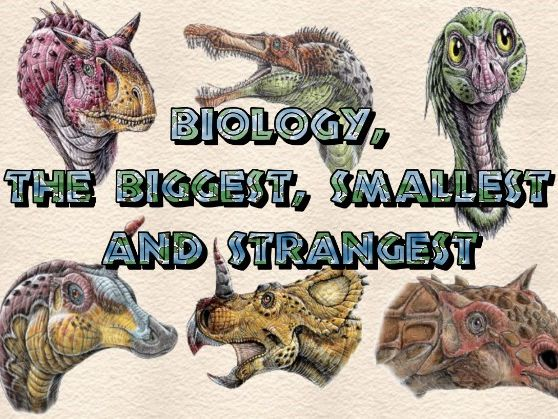 Biology, the Biggest, Smallest and the Strangest - When Dinosaurs Roamed the Earth Audio Series