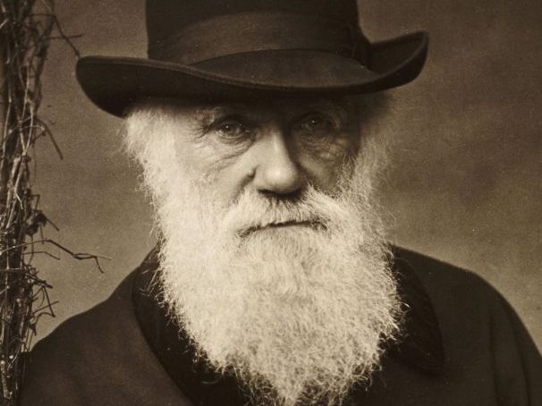 Accepting Charles Darwin's Theories [NEW SPEC AQA] 2020/2021