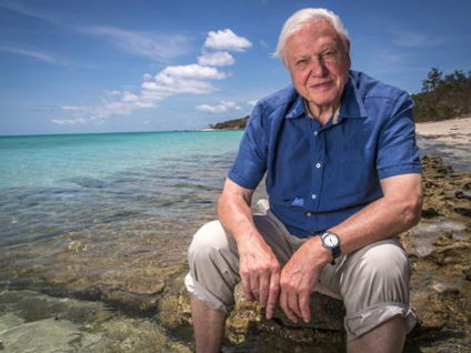 David Attenborough: Life On Our Planet - Cloze Procedure (and answers)