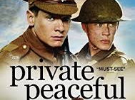 Private Peaceful comprehension task based on film