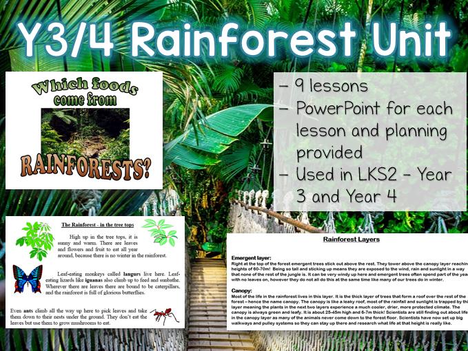 LKS2 RAINFOREST Art / Geography Unit - 16 lessons