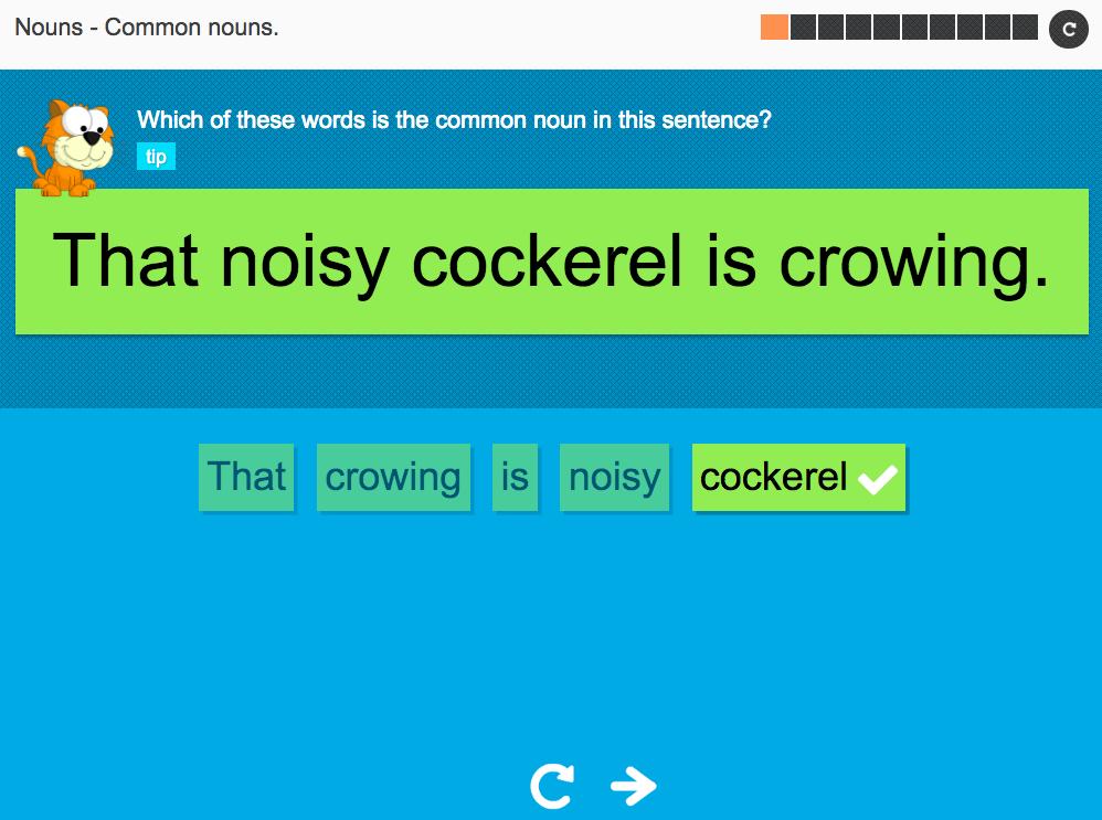 Common nouns - Interactive Activity - KS3 Spag