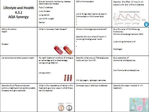 AQA Synergy Lifestyle and Health revision