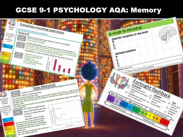 GCSE Psychology (AQA) Memory: Complete SoW (20 lessons)