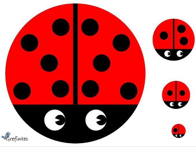 Ladybirds of Unusual Size