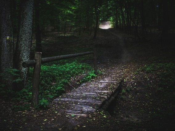 WALKING HOME IN THE DARK  - a KS3 descriptive writing prompt