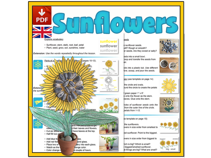 Sunflower Mini-lesson - UK Version (A4)