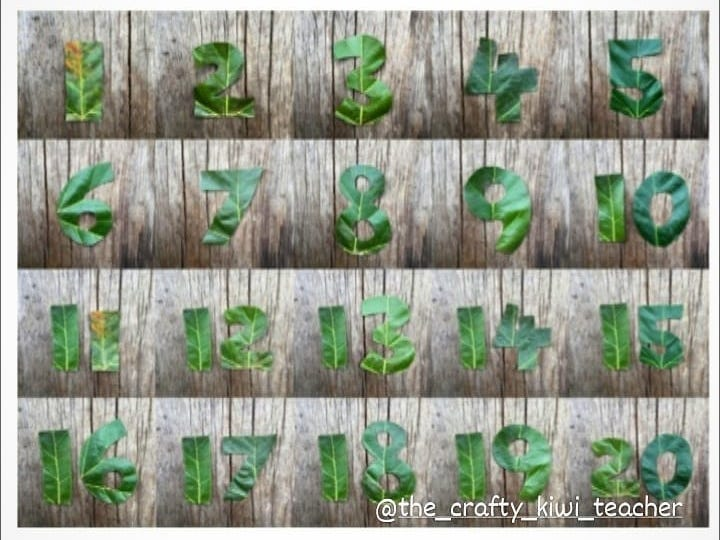 Leaf Numbers to download