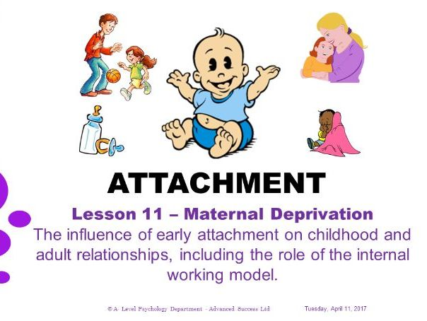 Powerpoint - Attachment -  Lesson 11 - The influence of early attachment