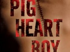 Pig Heart Boy - Year 5 and 6 Unit of work