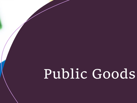 Introduction to Public Goods
