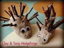 Observation maths Plan in depth hedgehog themed