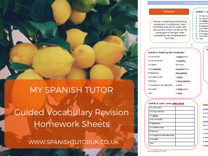 Guided Vocabulary Revision - Homework Sheets