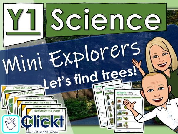 Year 1 Science: Trees: Mini Explorers