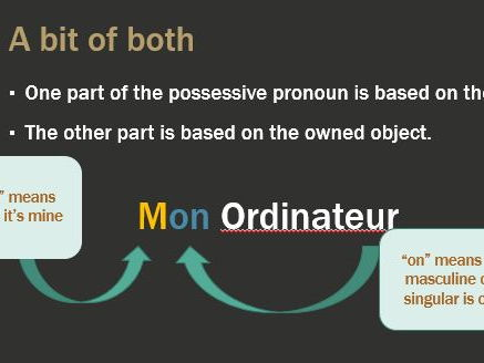 Possessive adjectives and pronouns in French.