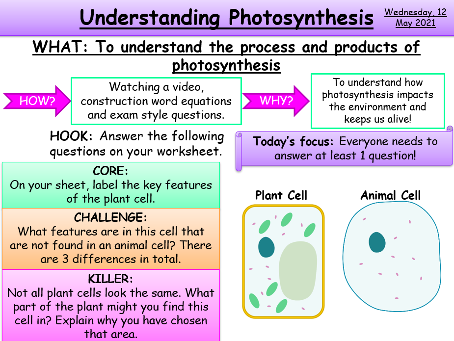 Understanding the Photosynthesis Equation KS3/KS4 AQA Biology