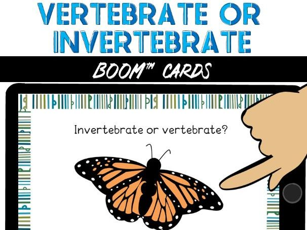 Vertebrate or Invertebrate BOOM Cards