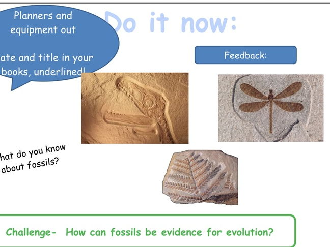 AQA Trilogy Biology Unit 7 Lesson 7 Speciation