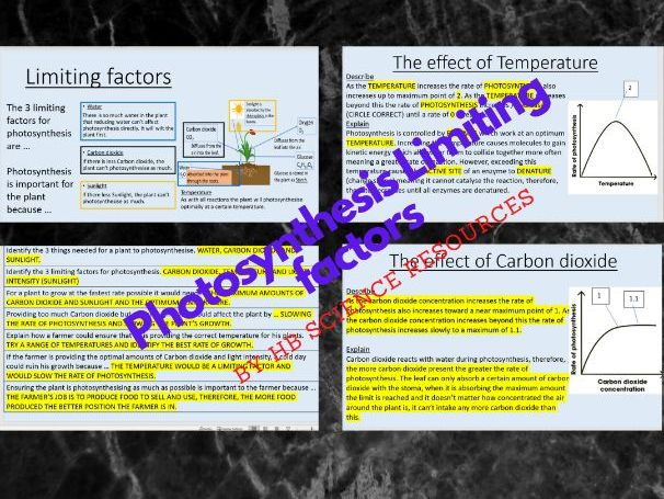 Photosynthesis limiting factors