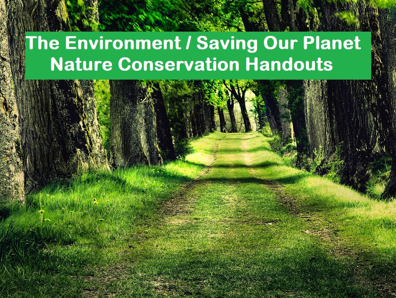 The Environment/ Saving Our Planet / Nature Conservation Handouts (SAVE 80%)