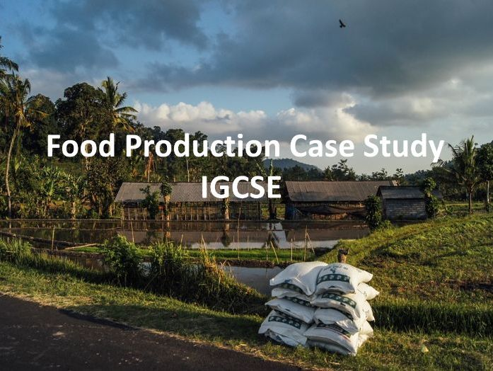 Food Production Case Study