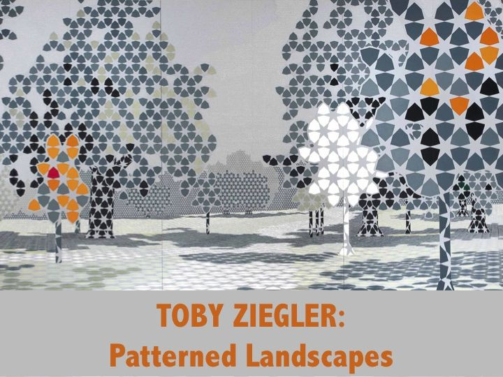 Toby Ziegler - Patterned Landscape Activity