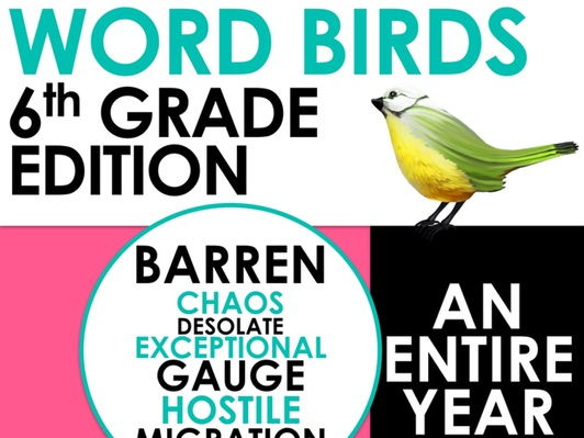 Word Birds Word of the Week Year 6 High-Level Vocabulary Builder: 40 Lessons!