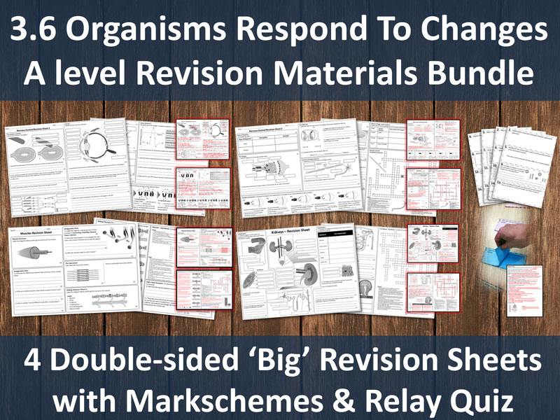 3.6 Organisms Respond To Change Revision Bundle