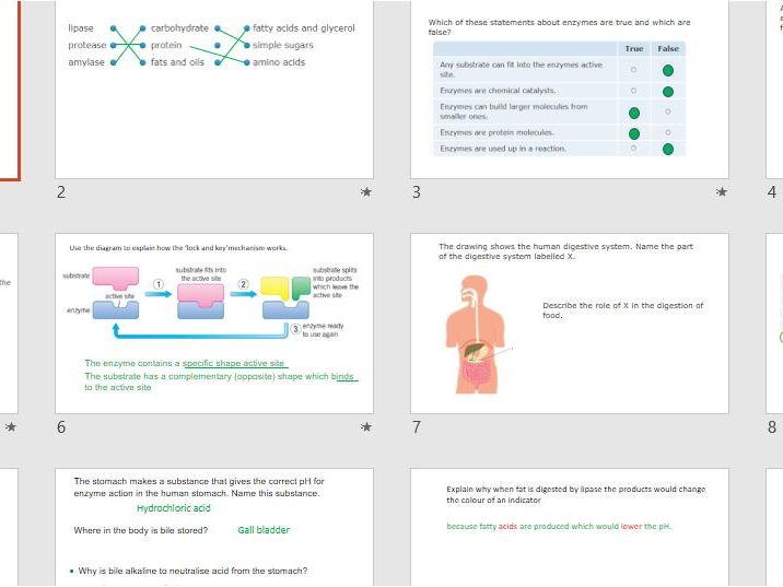 AQA Science Trilogy: Biology Unit 3 Revision