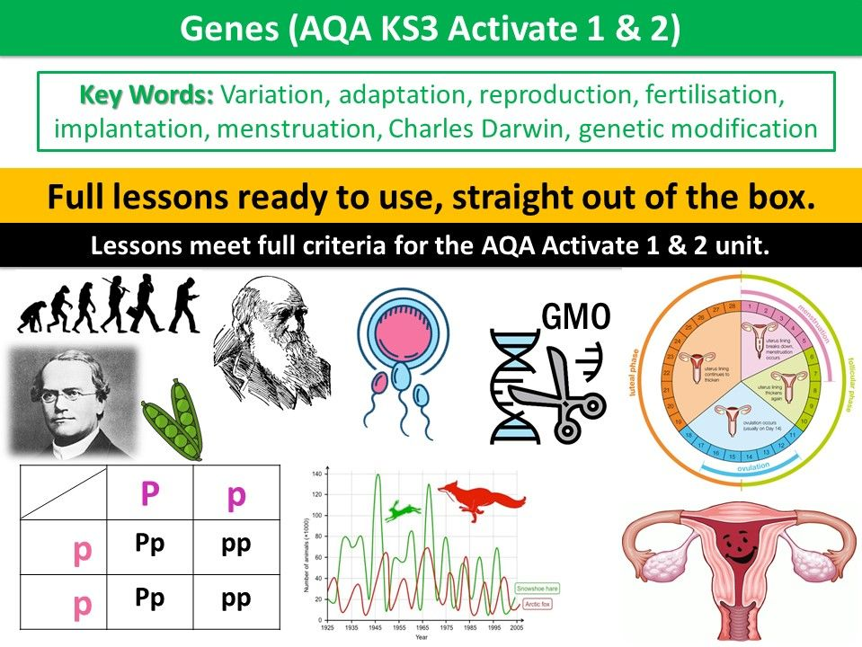 Genes (AQA KS3 Activate 1 & 2)