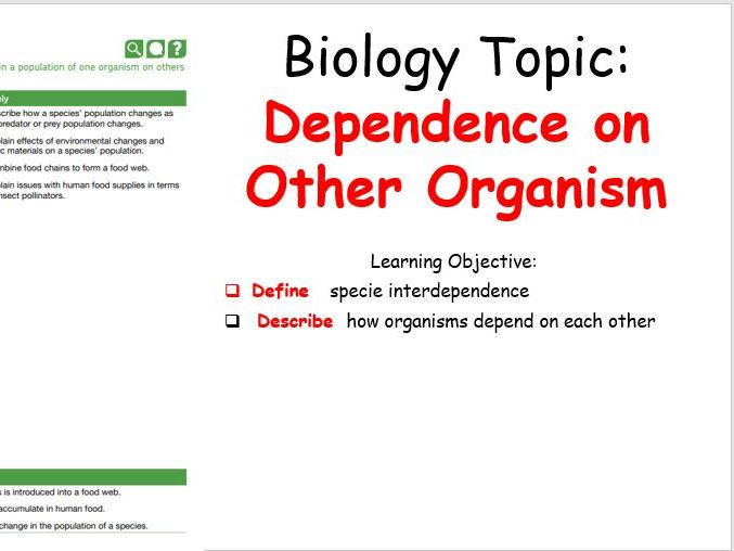 Dependence on Other Organism - KS3