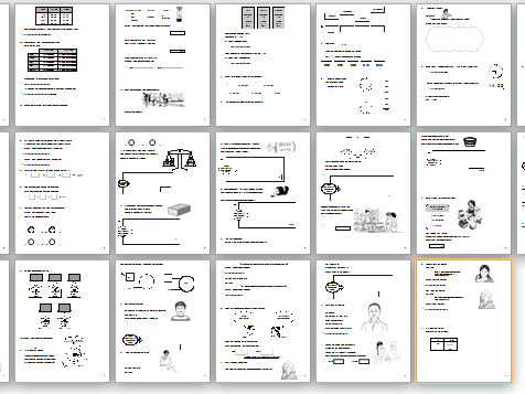 Maths Sats/ E3 Functional skills question book