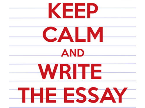 GCSE/A-Level/College/University - Primary Education Essay/Assignment - Mathematics