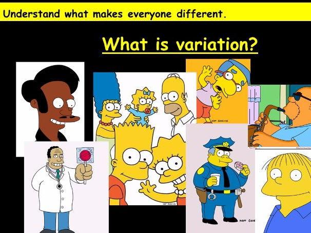 Inheritance and Variation (KS3 Biology)