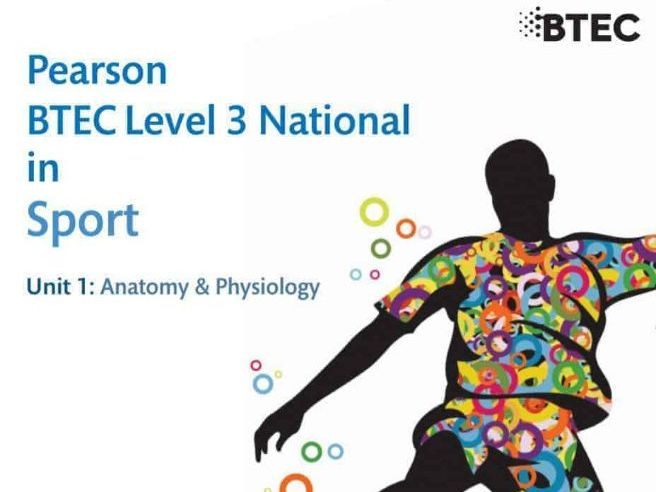 Unit 1: Anatomy & Physiology Package