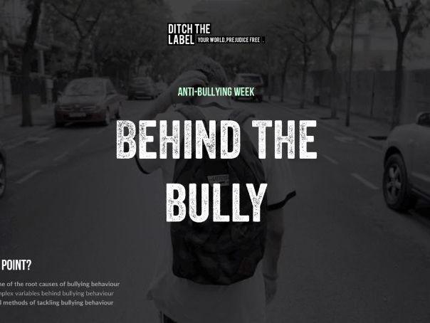 Behind the Bully